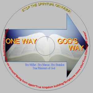 Picture of One way God's way